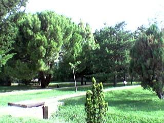 http://parquegrande.org/ : UNA WEB PARA LA PARTICIPACIÓN CIUDADANA EN LA GESTIÓN DEL PARQUE GRANDE DE ZARAGOZA. ¡ENHORABUENA!
