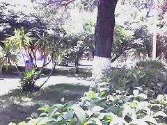 JARDINES DE LA CIUDAD UNIVERSITARIA DE CHIHUAHUA (MÉXICO)