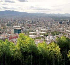 CIUDAD DE MÉXICO: ÁRBOLES COMO PROTECCIÓN DE ÁREAS ECOLÓGICAS. UNA VIEJA IDEA QUE AHORA SE PONDRÁ EN PRÁCTICA