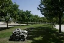 LEÓN (ESPAÑA): PRIVATIZACIÓN DE LOS SERVICIOS DE PARQUES Y JARDINES. UNA MEDIDA POLÉMICA