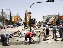 JALISCO (MÉXICO) MUEREN 119 ÁRBOLES RECIENTEMENTE TRASPLANTADOS...