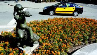 BARCELONA: PLANTACIÓN DE FLORES EN OTOÑO
