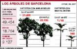 BARCELONA: CASI EL 95% DEL ARBOLADO URBANO ESTÁ EN BUEN ESTADO