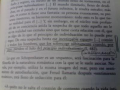CERCANÍAS, 37